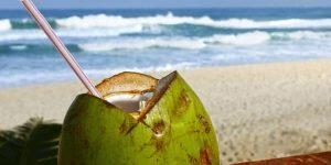 COCO ENERGIZANTE NATURAL » Vitaminas del agua y leche de coco