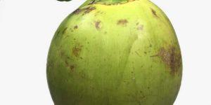 COCO VERDE » Bondades y beneficios de su consumo